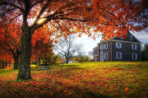 autumn-home-john-loreaux
